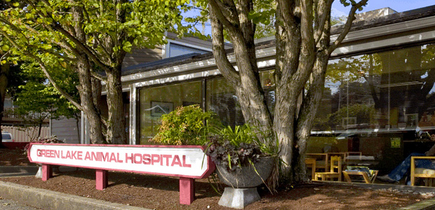 Green Lake Animal Hospital